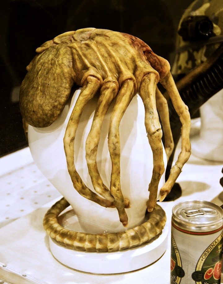 Facehugger movie prop