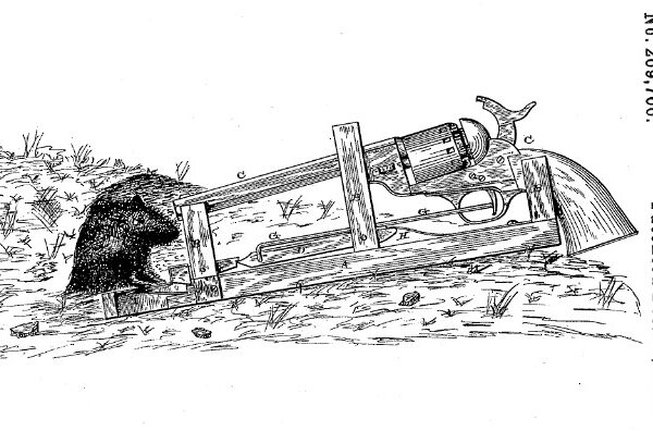 Mousetrap with a gun